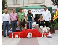 Exposicin Jaca 2009
