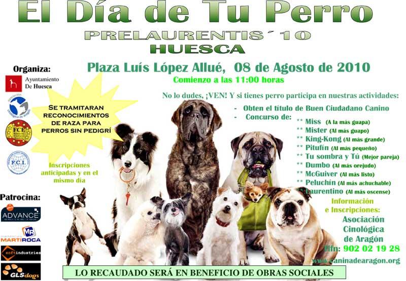El día de tu perro
