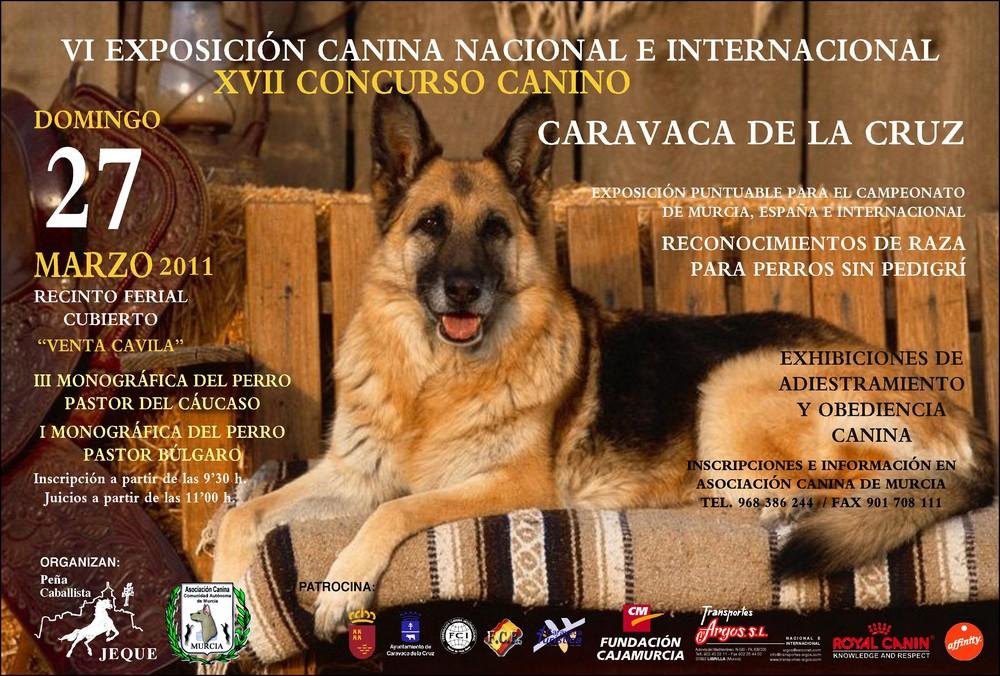 VI EXPOSICIÓN CANINA NACIONAL E INTERNACIONAL CARAVACA DE LA CRUZ 2011