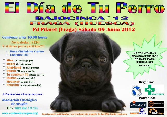 EL DIA DE TU PERRO 2012