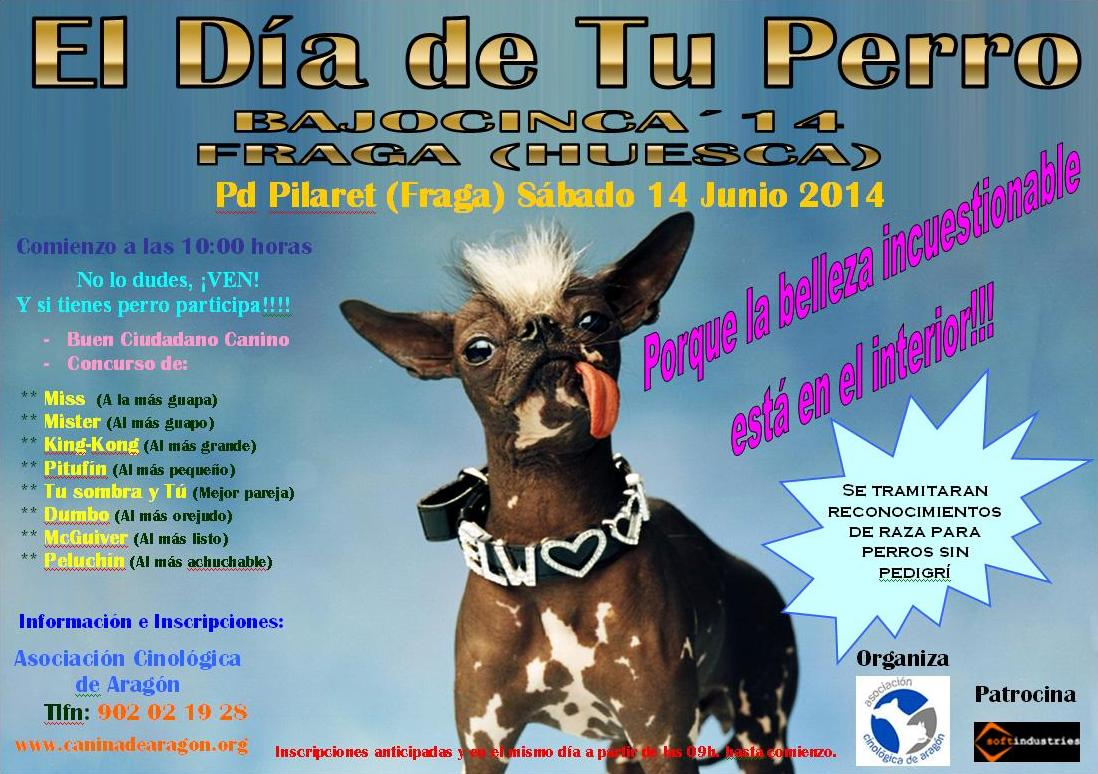 El Día de Tu Perro - Bajocinca 2014