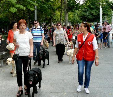 Los perros-guía protagonizan una jornada festiva en el centro de Zaragoza