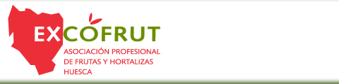Excofrut-Asociacin Profesional de frutas y hortalizas